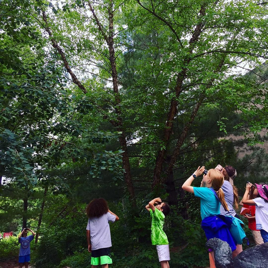 camp of students outside using binoculars to look for birds