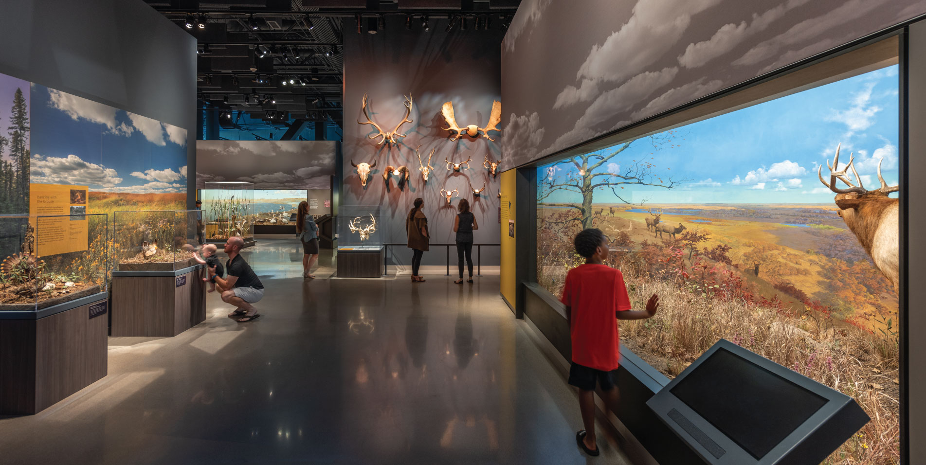People looking at dioramas and other exhibits in the museum