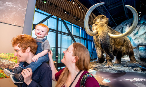 A family visits the woolly mammoth