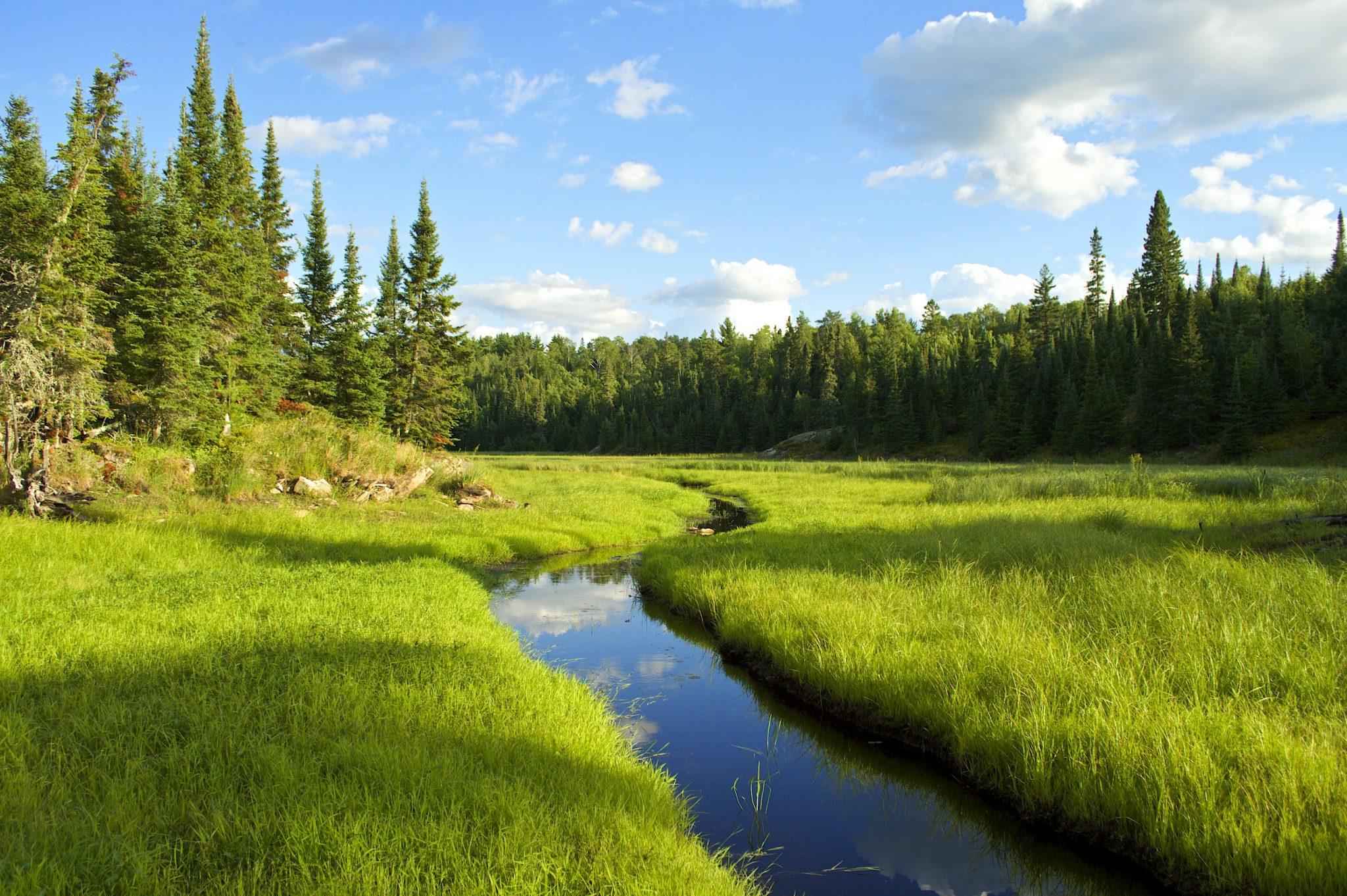Voyageurs National Park scene