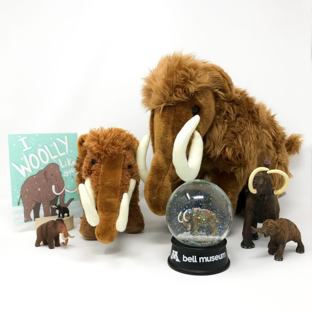 Various woolly mammoth items from the museum shop arranged together.