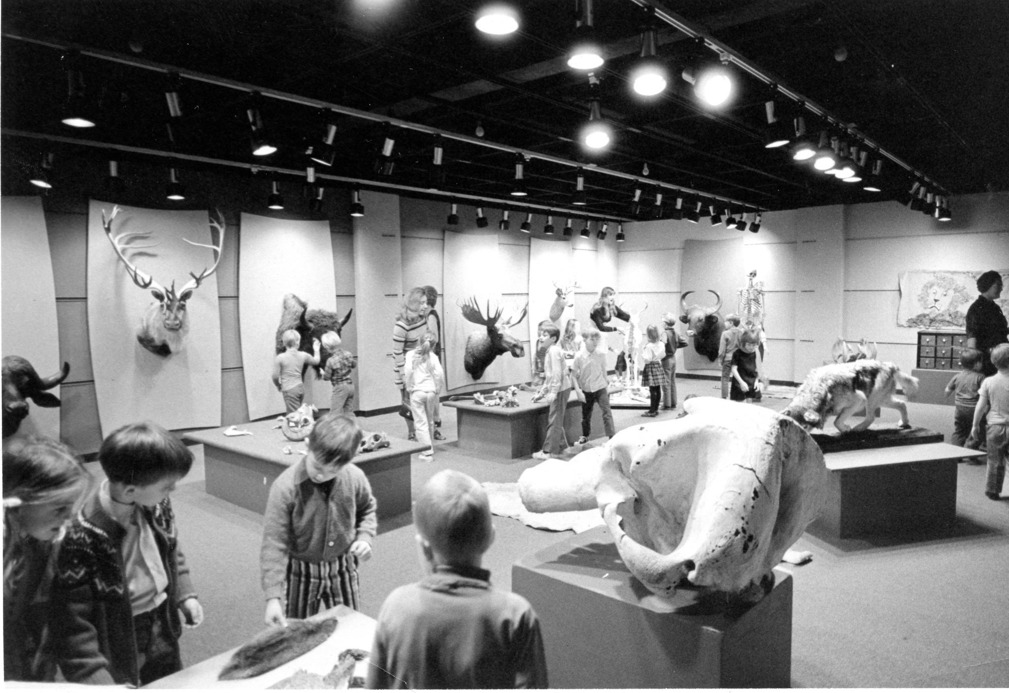 Black and white photo of the original displays in Touch & See.