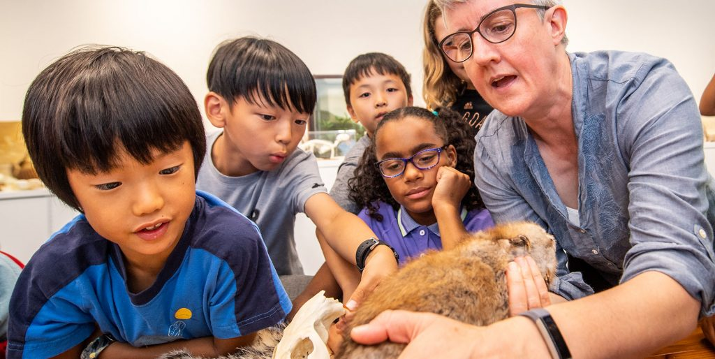 A group of kids and an instructor examine a taxidermied animal, animal bones and furs with an instructor