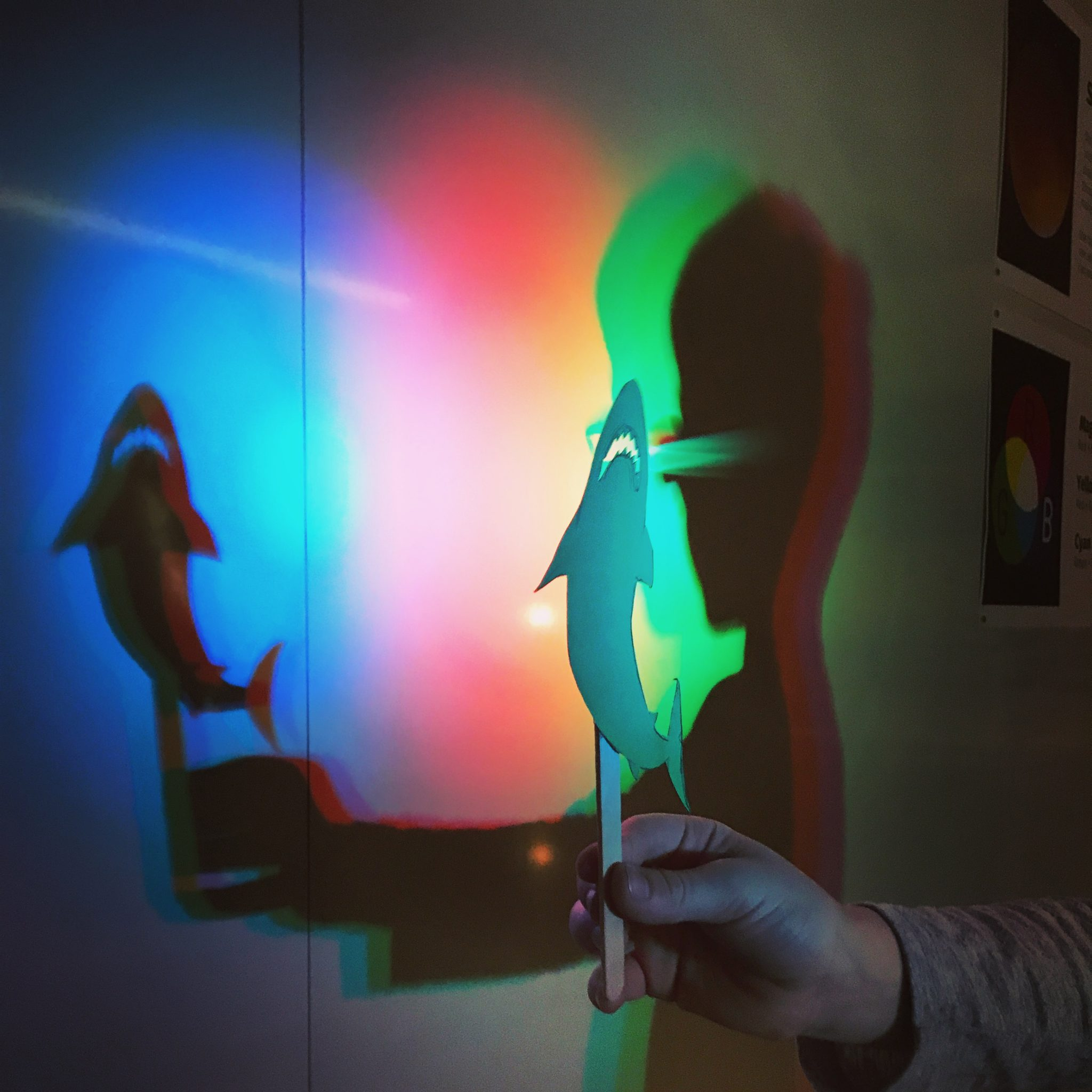 Child holds a shadow puppet of a shark infront of red, green, and blue lights.