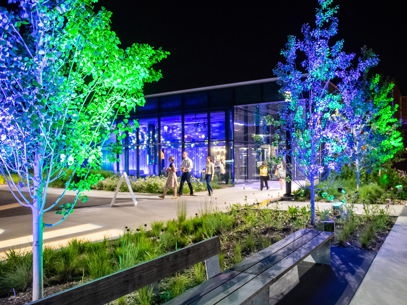 The entrance of the Bell Museum at night during a special event, with bright blue and green lights illuminating the trees
