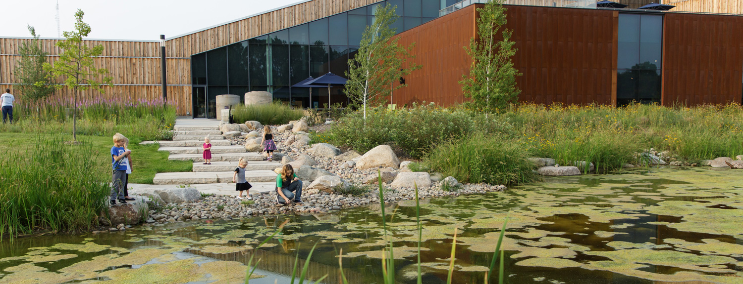 Kids check out the pond on the Bell Museum's Learning Landscape