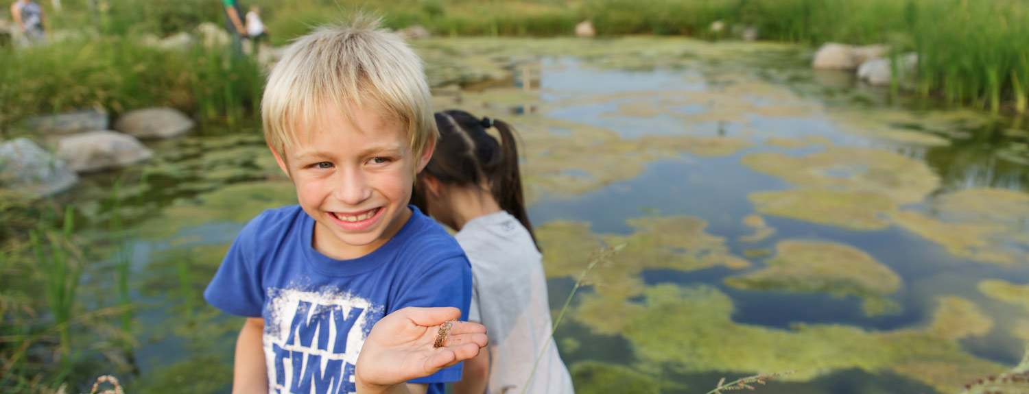 A boy holding a cicada by a pond at the Bell Museum