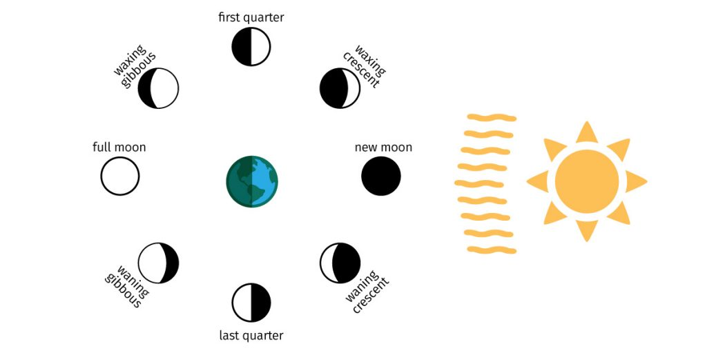 Diagram showing the changing moon phases as it orbits Earth.