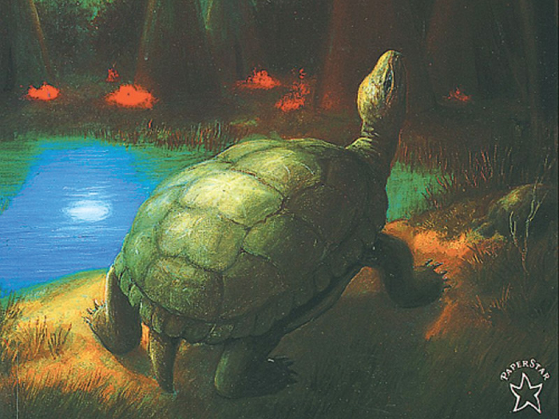 Cover art for Thirteen Moons on Turtle's Back