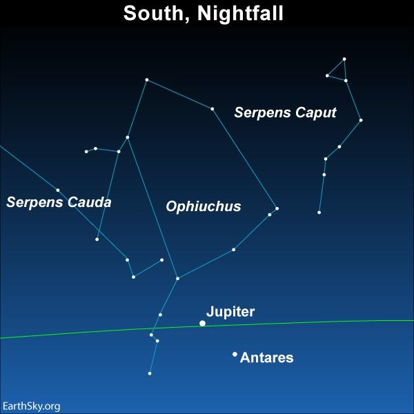 Diagram of Ophiuchus constellation at nightfall