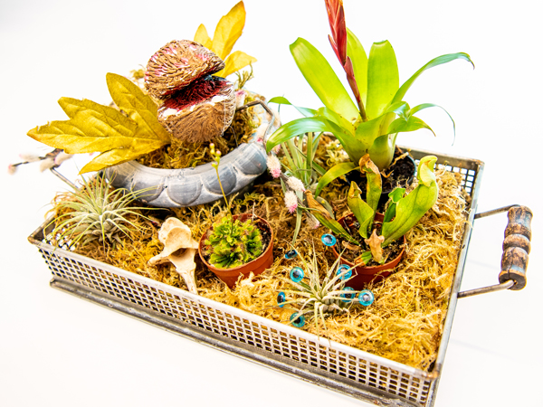 "A ""botanical atrocity"" — a craft project display created with fake plants assembled in a tray"