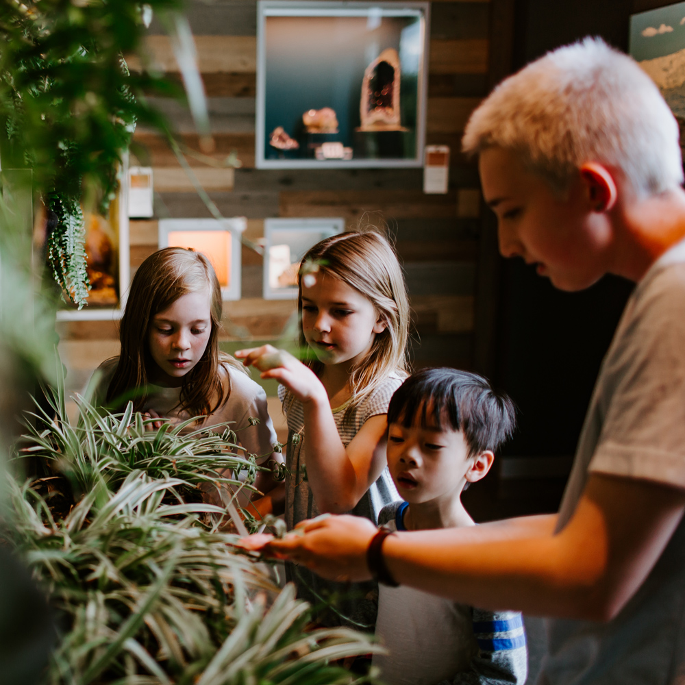 A student shows plants to children visiting the Bell