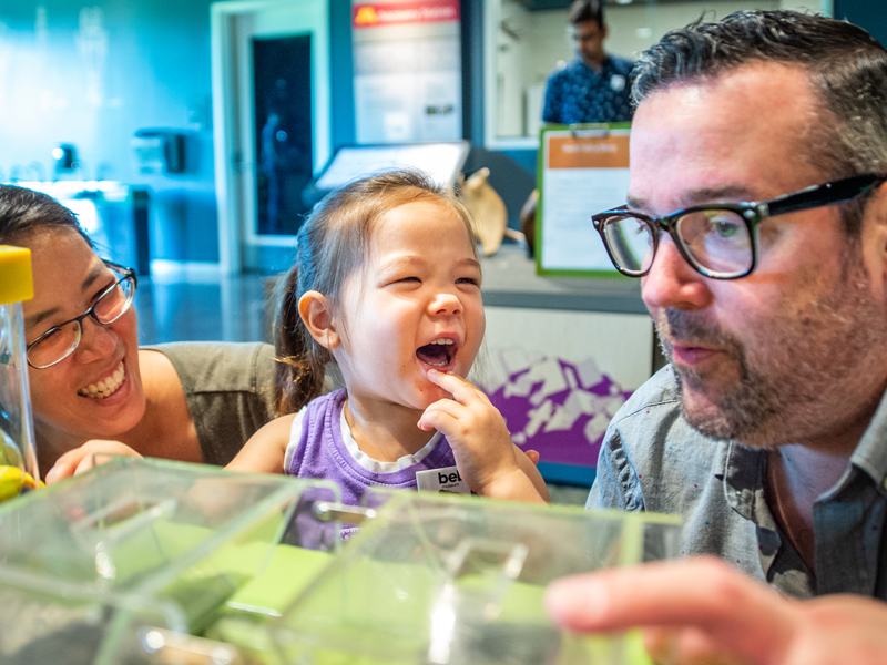Visitors, including a little girl, enjoy the Touch & See Lab