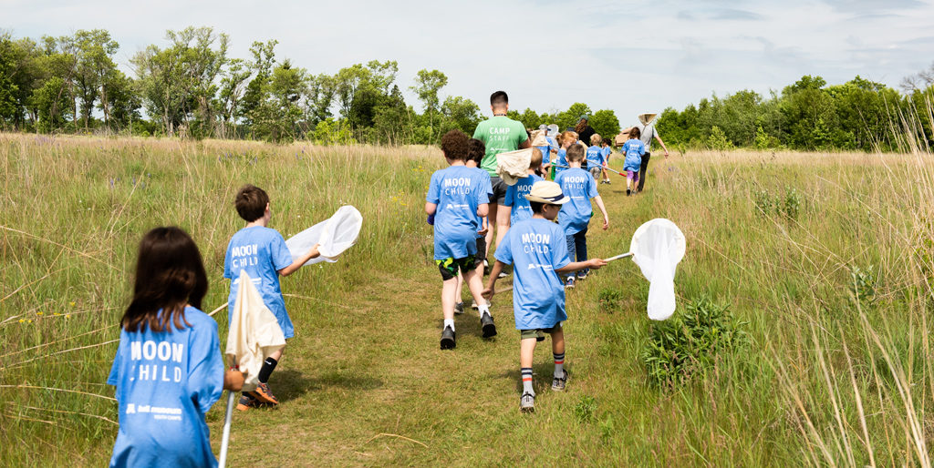 Kids collecting specimens in a field with nets