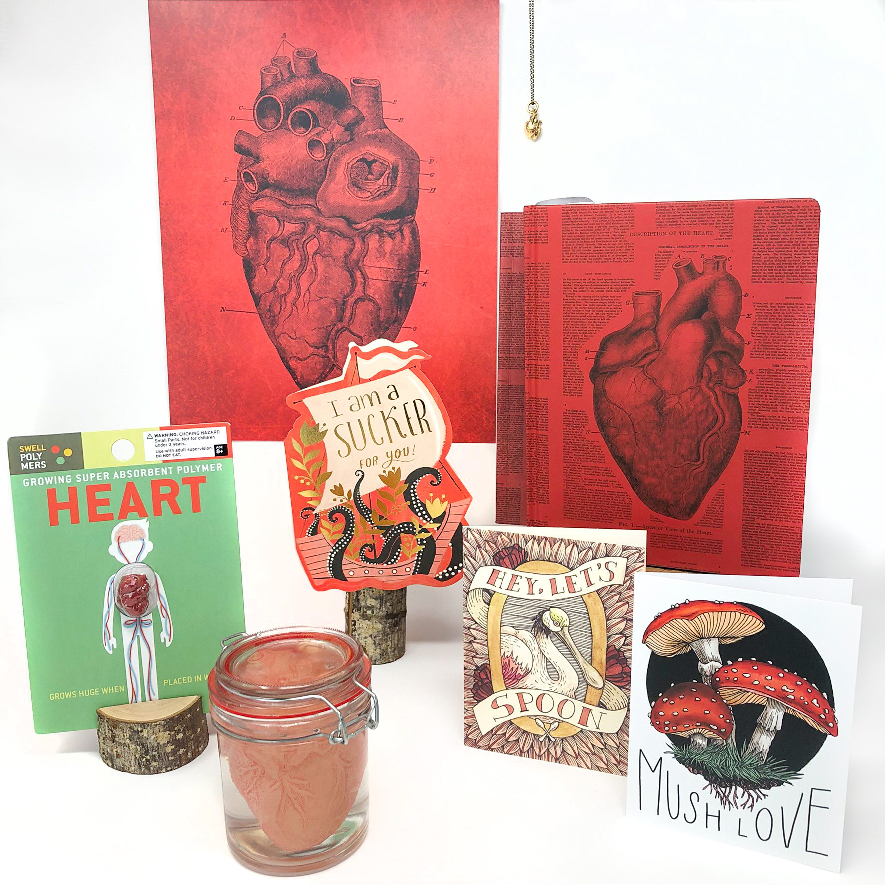 A grouping of gifts related to the anatomical drawing of a human heart