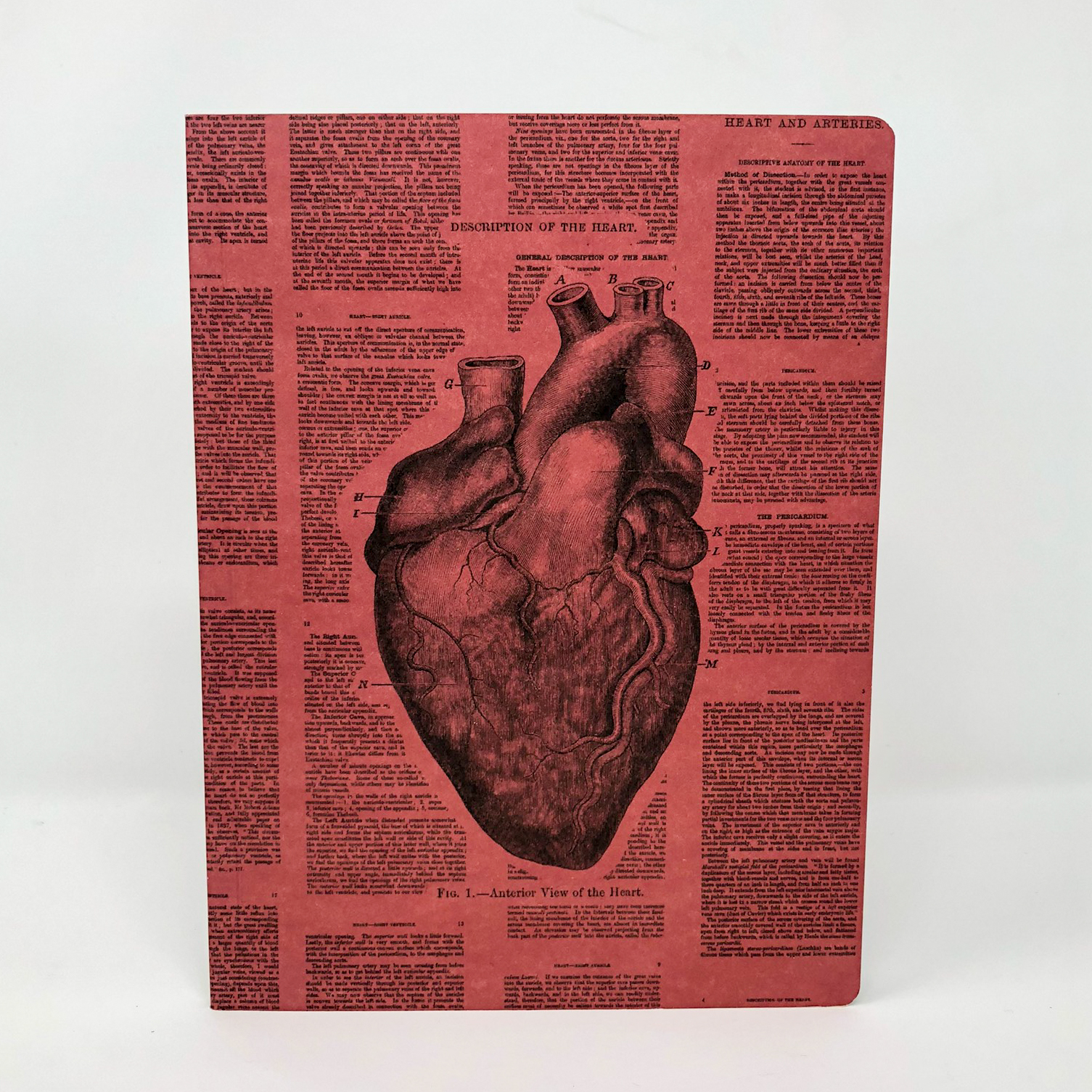 The cover of a journal featuring an anatomical drawing of a human heart