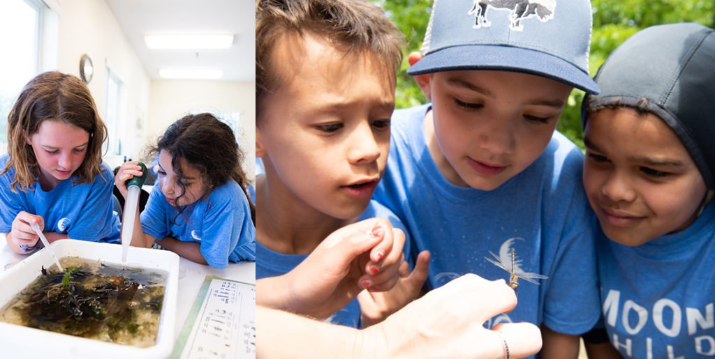 Kids at Bell summer camp doing science indoors and out