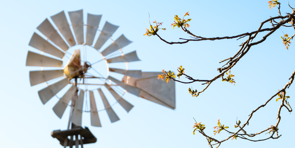 Windmill on a sunny day