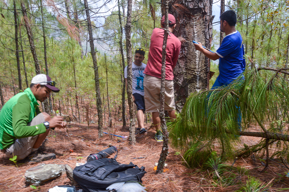 Uday's team collecting core samples