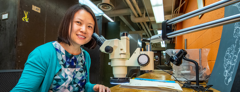 Plant curator Ya Yang with a microscope