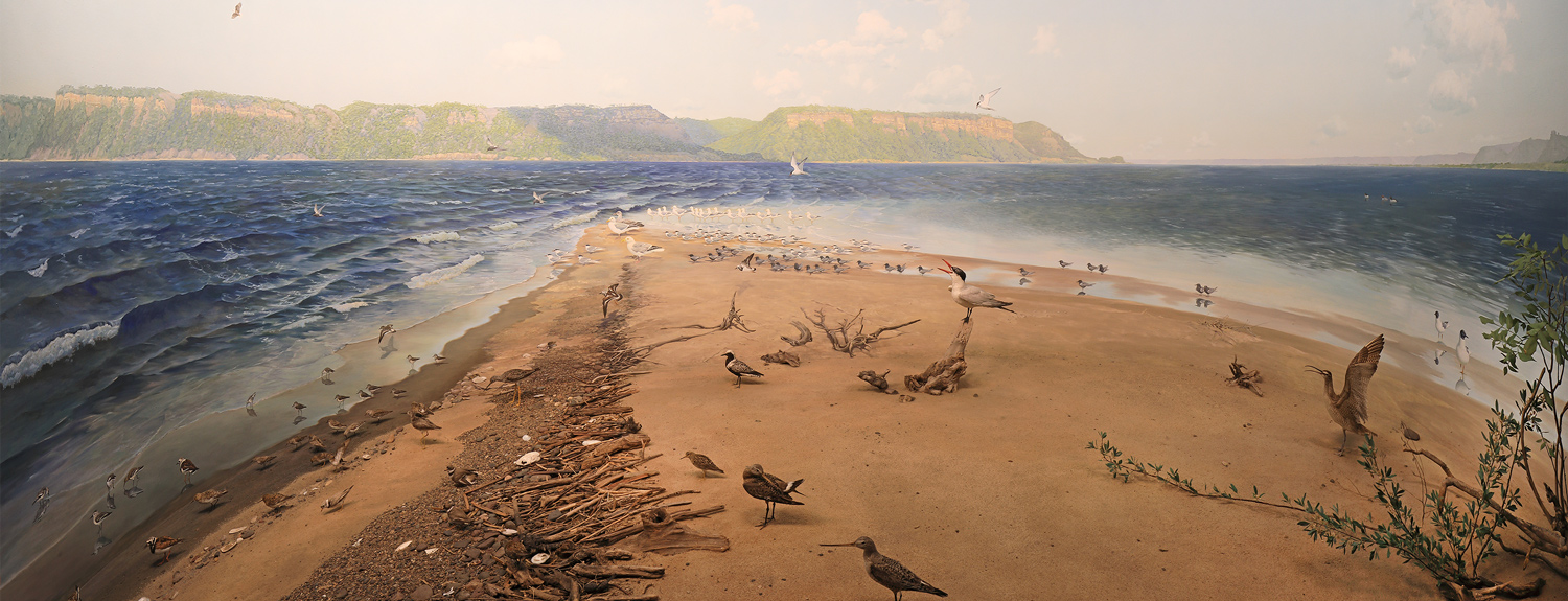 Completed in 1940, the diorama Lake Pepin's Sand Point is situated on the west side of the lake looking toward Maiden Rock, Wisconsin