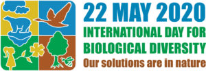 22 May 2020 International Day for Biological Diversity; our Solutions are in Nature