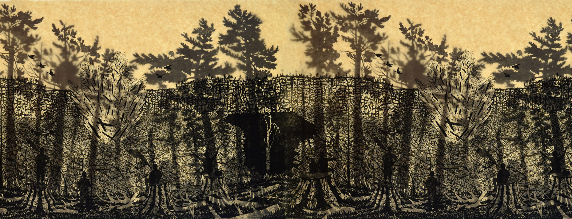 The Late Great Pine Forests & Death by a Billion Cuts, a wood cut by of trees