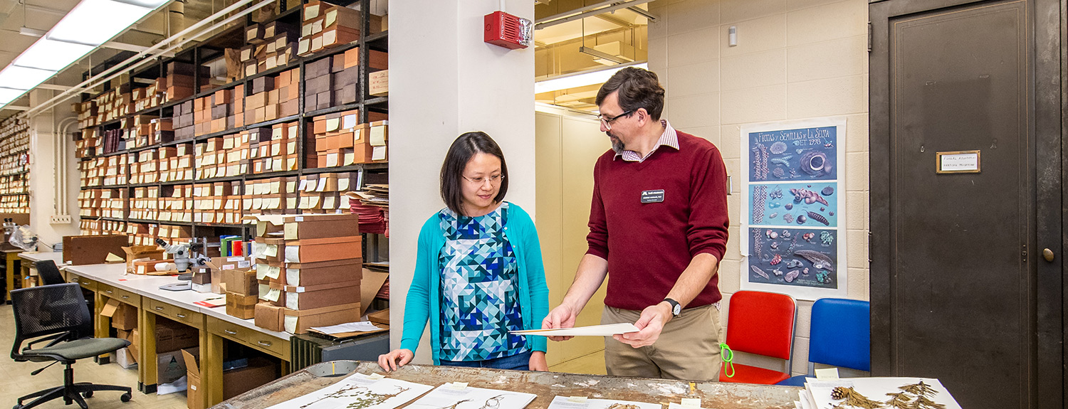 A woman and a man examining plant specimens