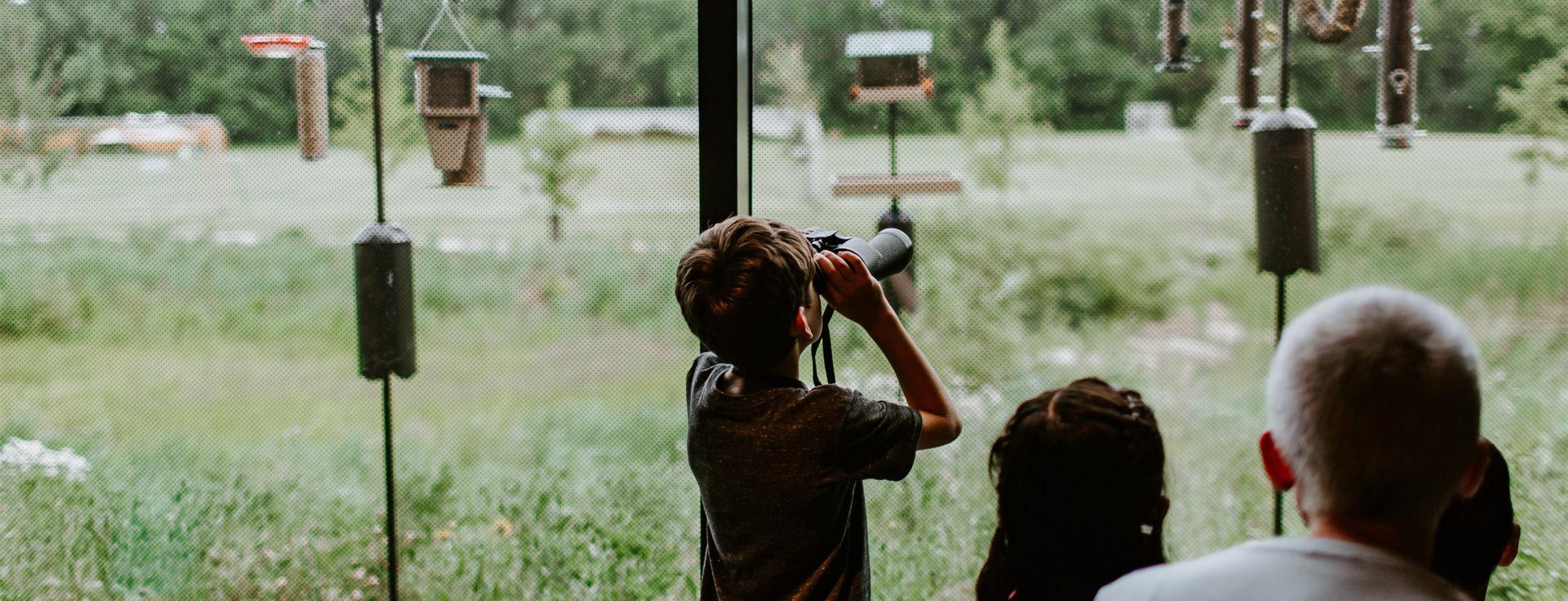 youth look through binoculars at bird feeders