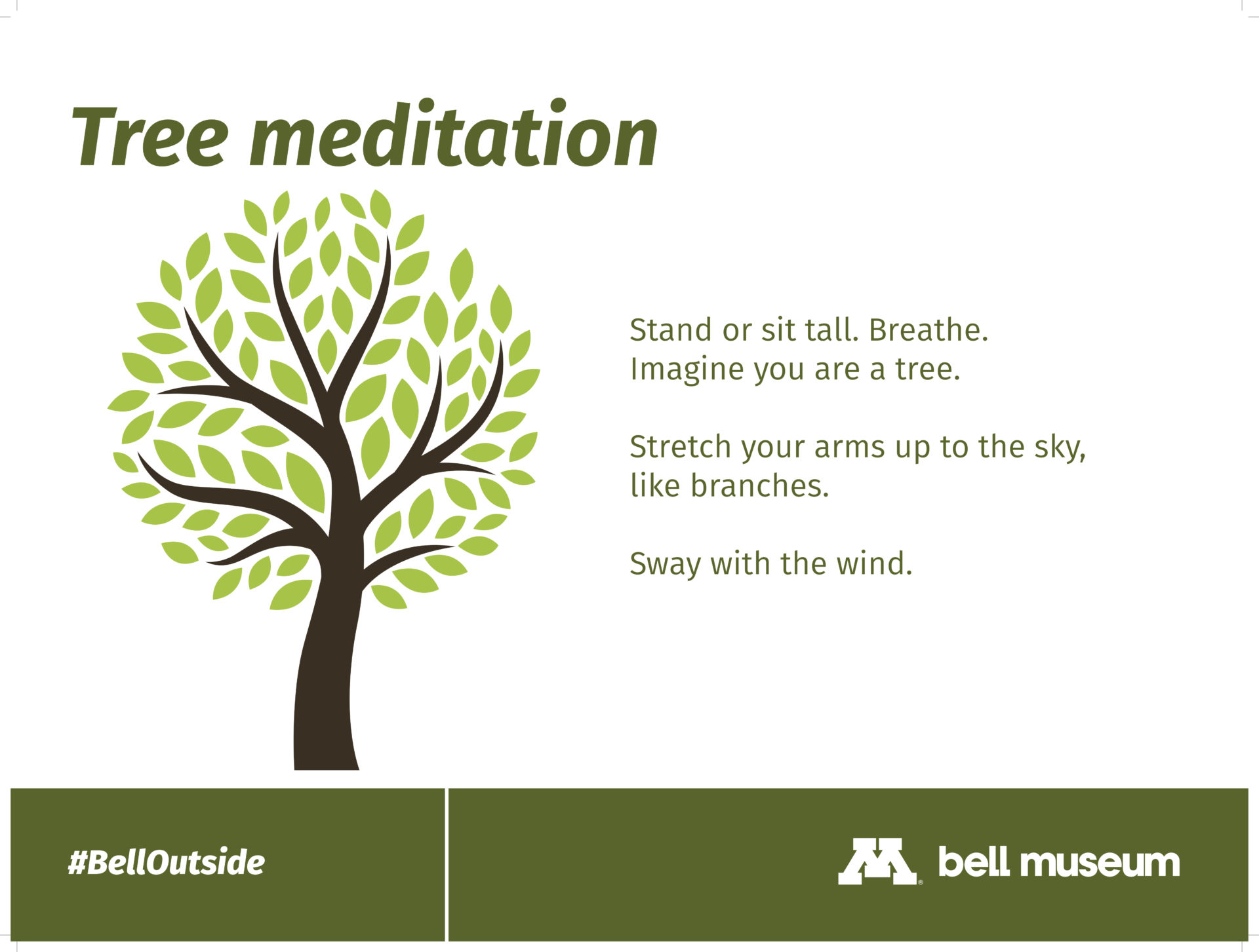 tree meditation activity