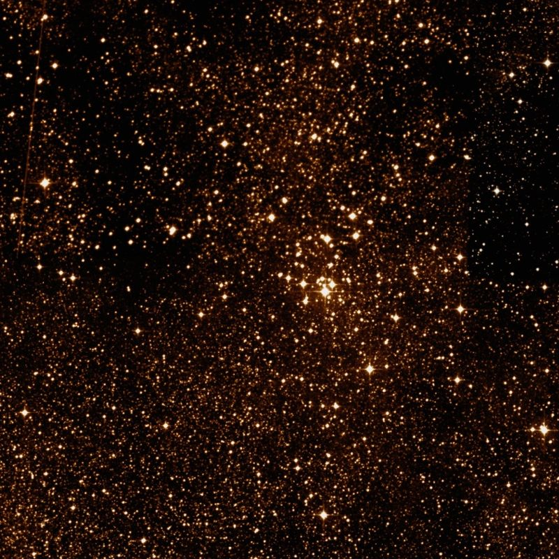 smattering of golden stars in a black space