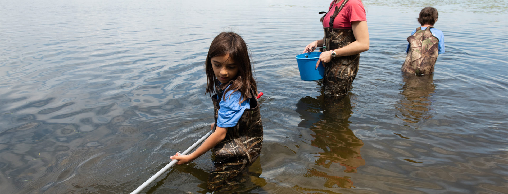 a child using a net to catch aquatif insects