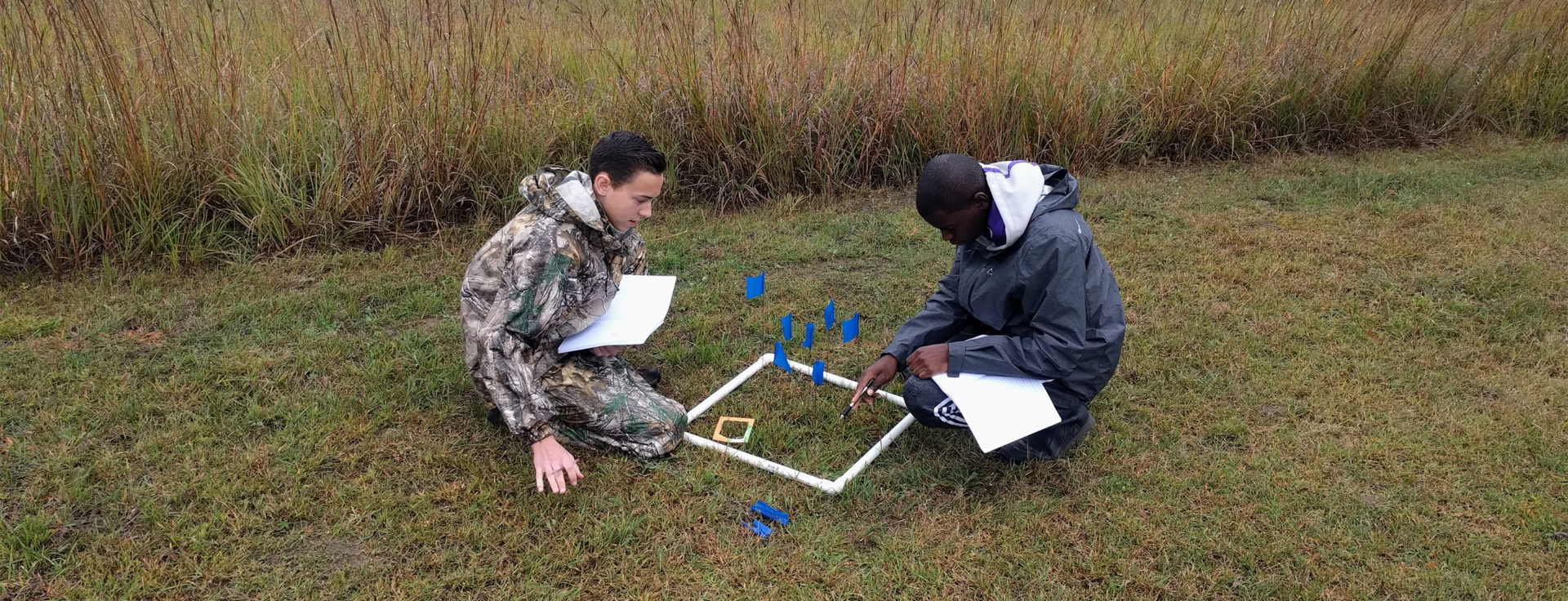 two students observing plants in a quadrat