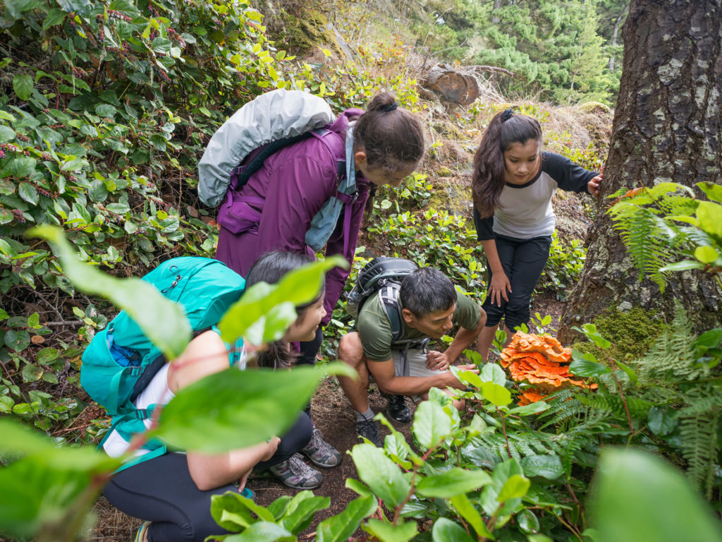 An extended family of hikers with backpacks stop to look at an edible mushroom.