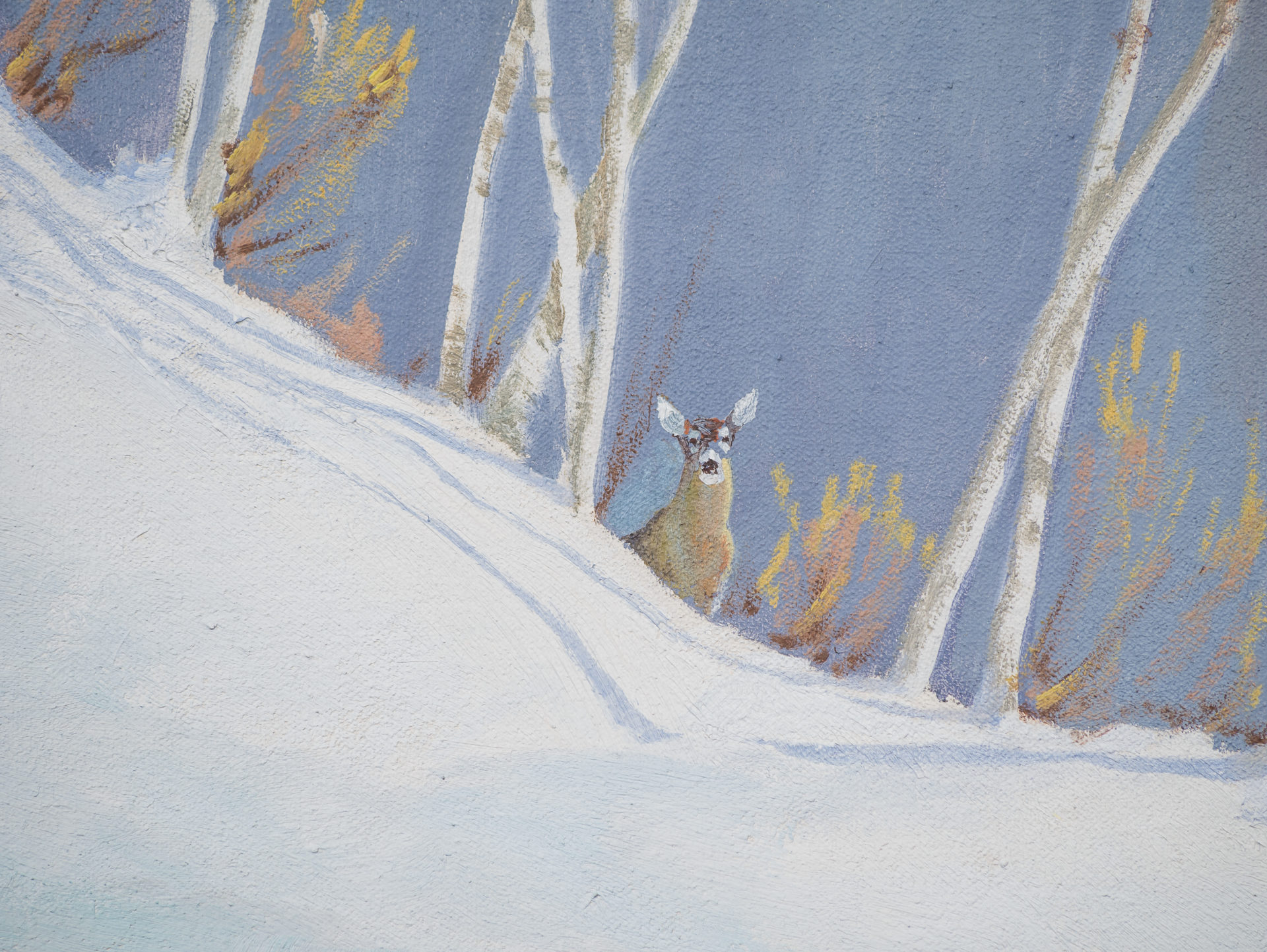 alert deer in snow
