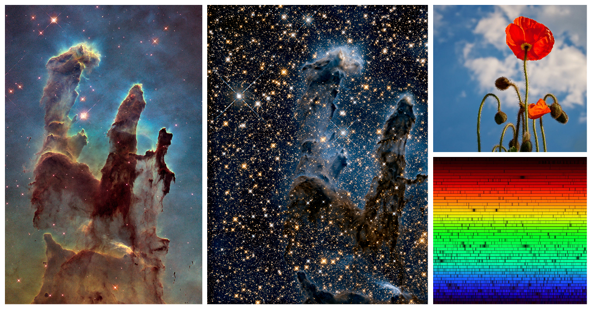 4 panels: 2 images of nebula and stars, a red poppy with a blue sky, and a light spectrum arranged in a rainbow of colors