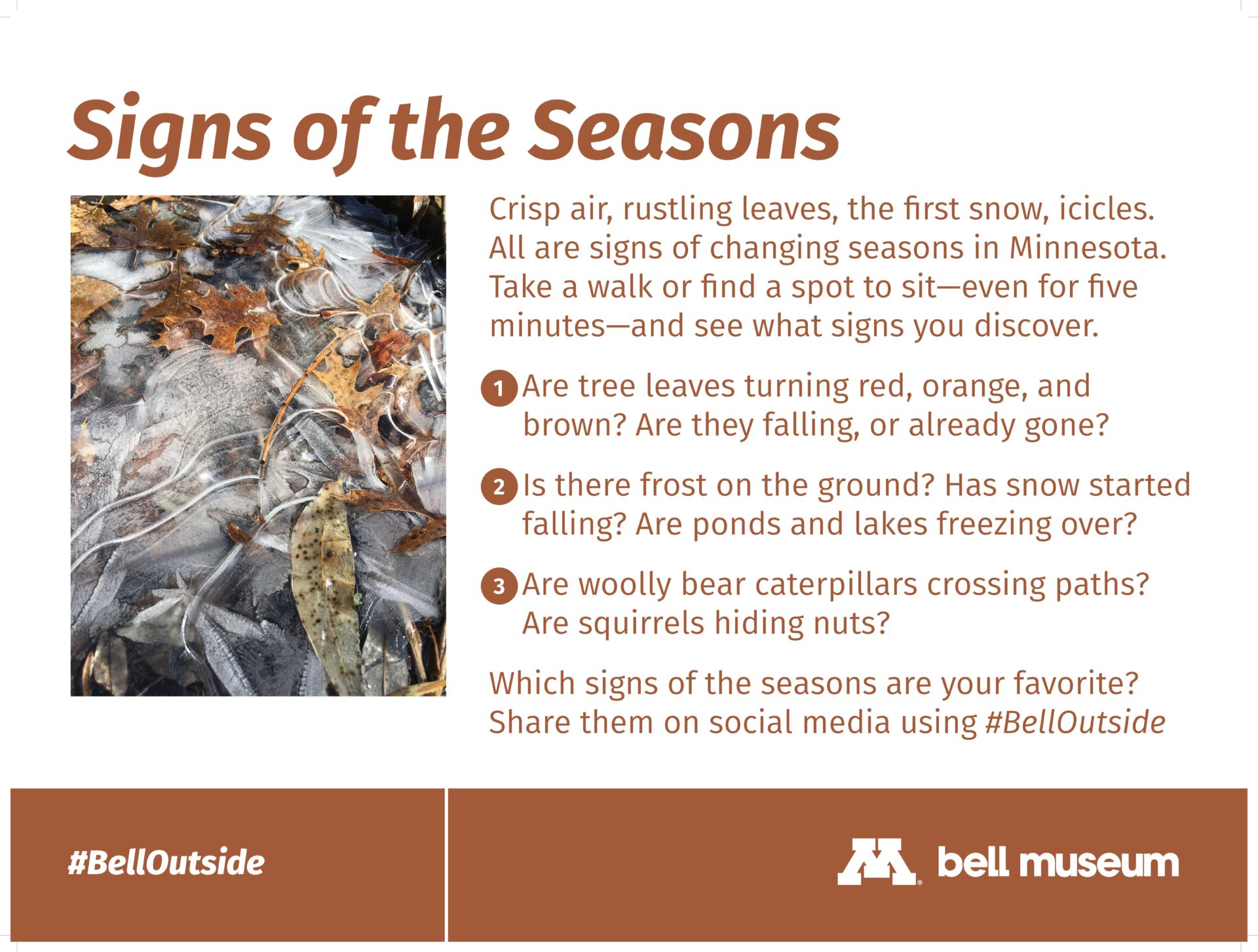 Signs of the Seasons. Crisp air, rustling leaves, the first snow, icicles. All are signs of changing seasons in Minnesota. Take a walk or find a spot to sit—even for five minutes—and see what signs you discover.