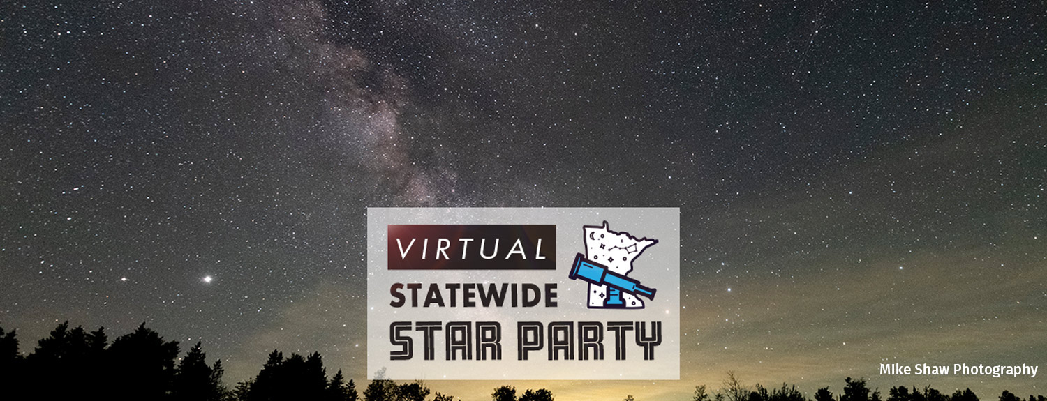 Virtual Statewide Star Party, photo of Milky Way over tree silhouettes