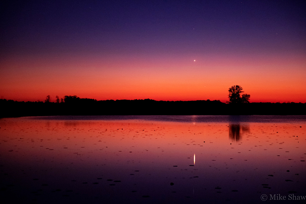 Looking out from a pond, you can make out venus and mercury