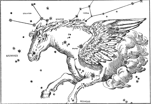 Drawing and star placement of pegasus