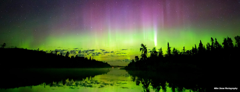 aurora borealis over tree silhouettes and lake, green and purple