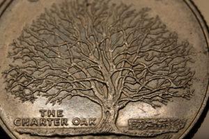 Closeup of oak tree on Connecticut state quarter