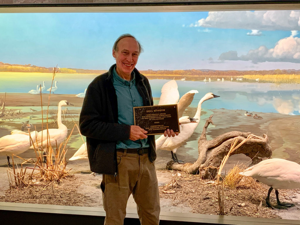Don Luce holding the Ross Merrill Award in front of the Tundra Swans at the Minnesota River Valley diorama, Bell Museum, St. Paul, MN