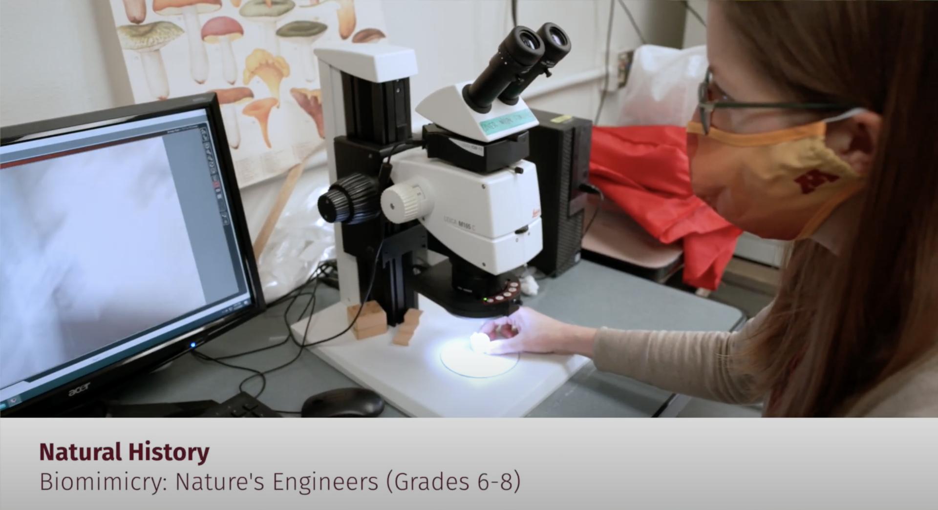 scientist using microscope to analyze data