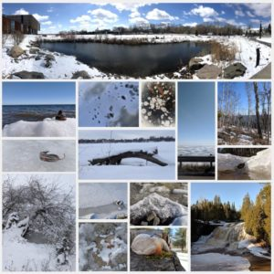 collage of winter images showing the range of colors