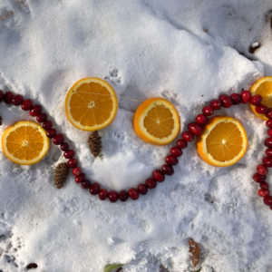 cranberry strand and orange slices on snow
