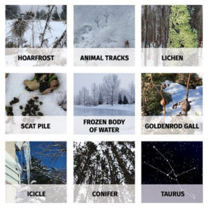 """winter """"bingo"""" board with images of outdoor items"""