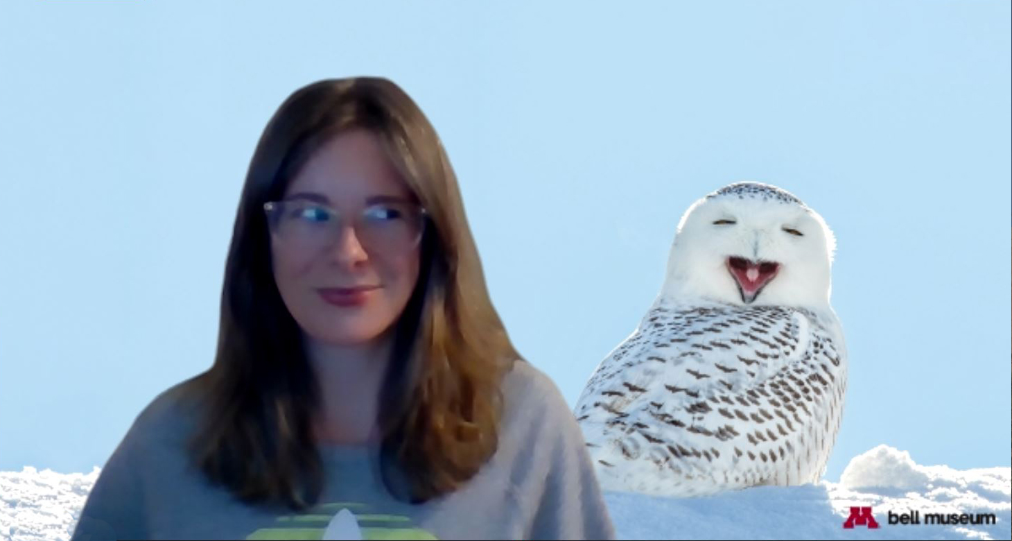 woman in front of snowy owl zoom background