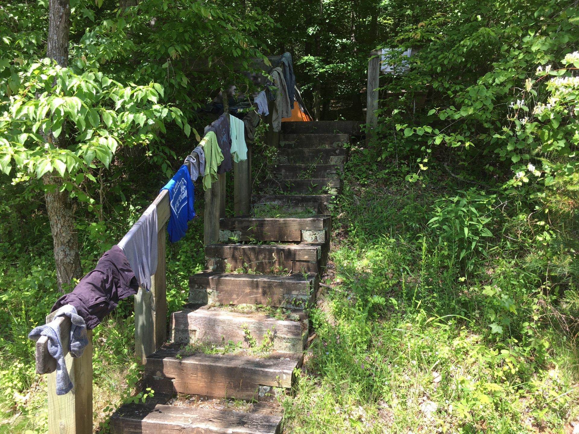 clothes hanging on a stairway railing in the woods