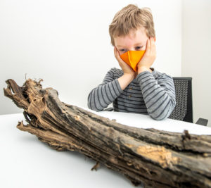 A child looking with amazement at a piece of wood